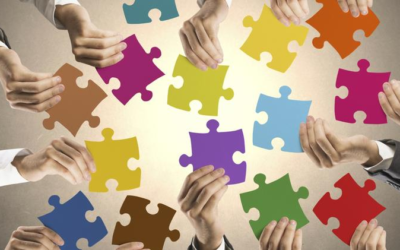 What is Franchising Plus' Role in Helping You Franchise Your Business?